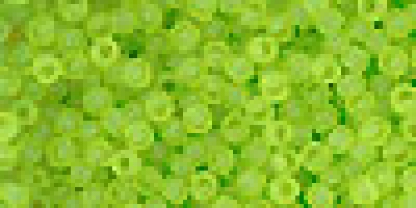 TR-11-4F Transparent-Frosted Lime Green, 10g